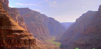 Our Grand Canyon tours from Las Vegas give visitors a chance to enjoy the canyon and explore the bottom via helicopter